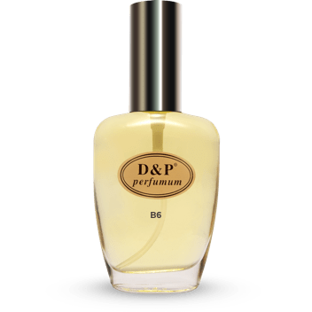 B6 100 ml - eau de toilette - herenparfum